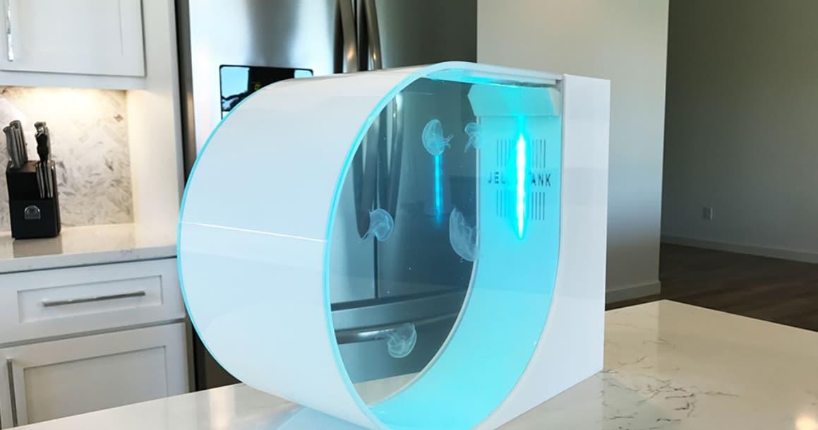 The Jelly Tank The Ultimate Desktop Aquarium