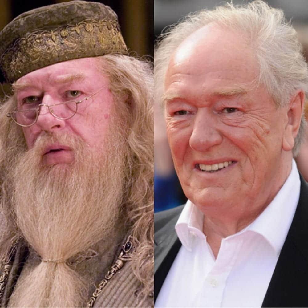 15. Albus Dumbledore Michael Gambon